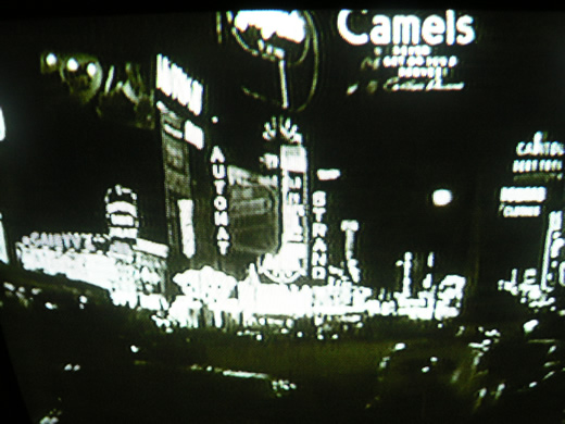 camelst.1181618470.jpg