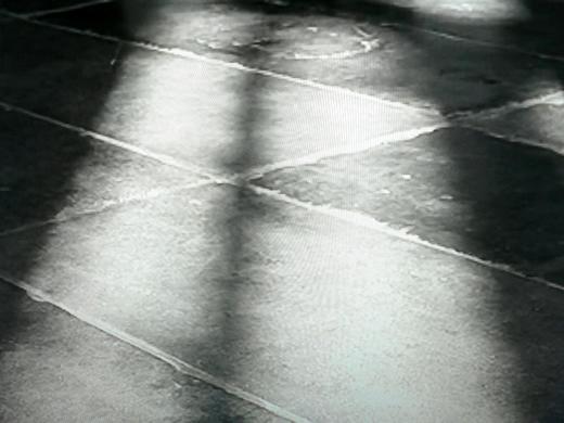 tracest.1196308251.jpg