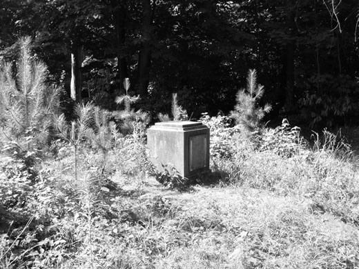 la-stele-abandonneet.1223711200.jpg