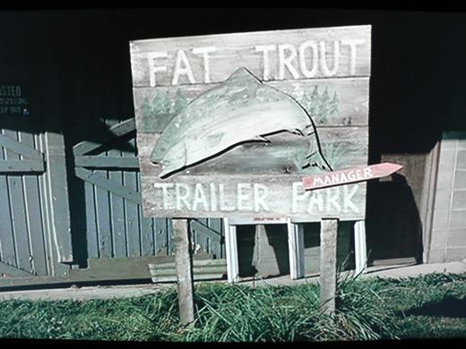 fat-troutt.1231436068.jpg