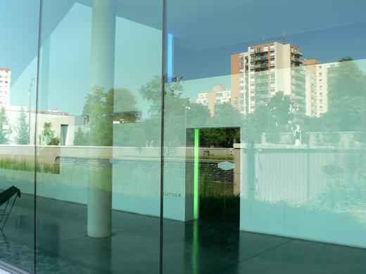 reflexiont.1231589792.jpg